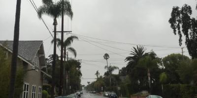 Rainy drizzle... favorite summer morning so far.